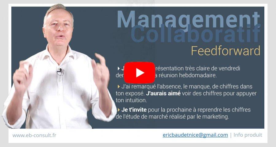 formation en management collaboratif présentiel et à distancee b