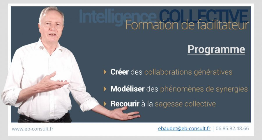 comment devenir-facilitateur-en-intelligence-collective-robert-dilts-formation-france-belgique-francophonie