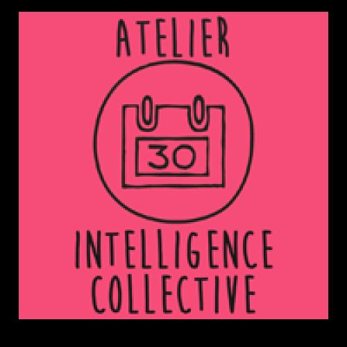 #22 – Conférence atelier : les fondamentaux de l'intelligence collective