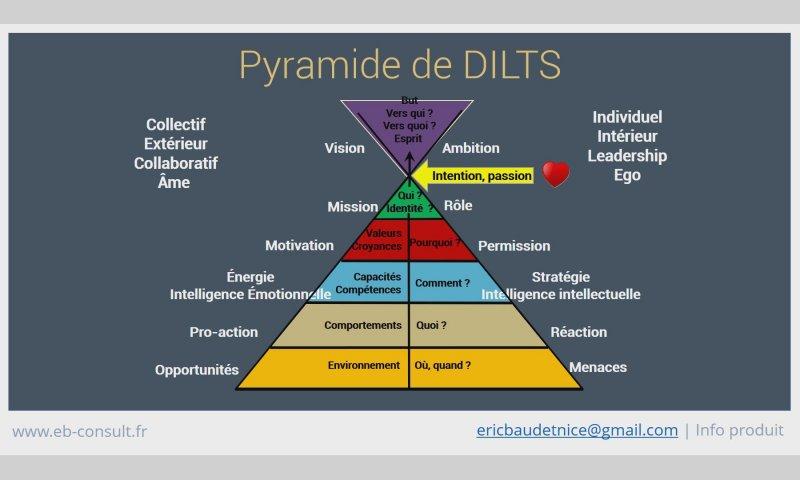 pyramide-de-dilts_eb-consult